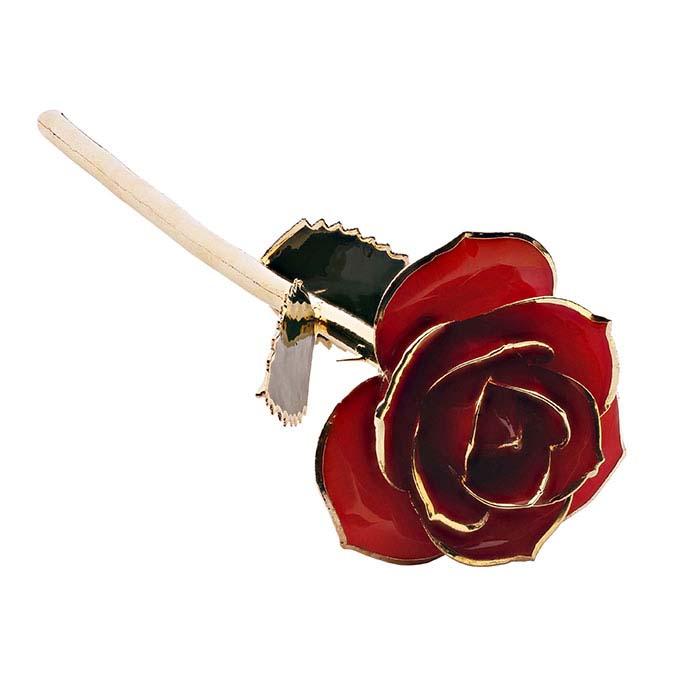 "24K Yellow Gold-Trimmed ""Ravishing Red"" Long-Stemmed Rose"