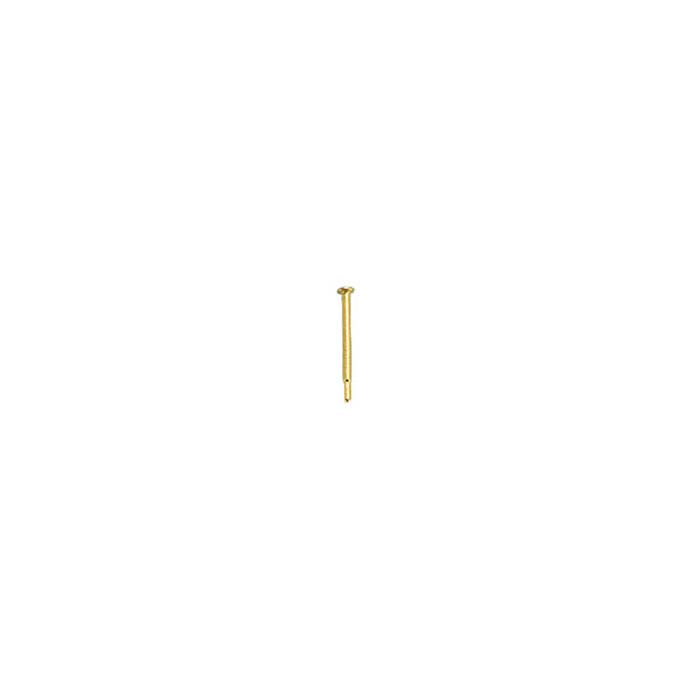 14K Yellow Gold Friction Ear Post with Pad