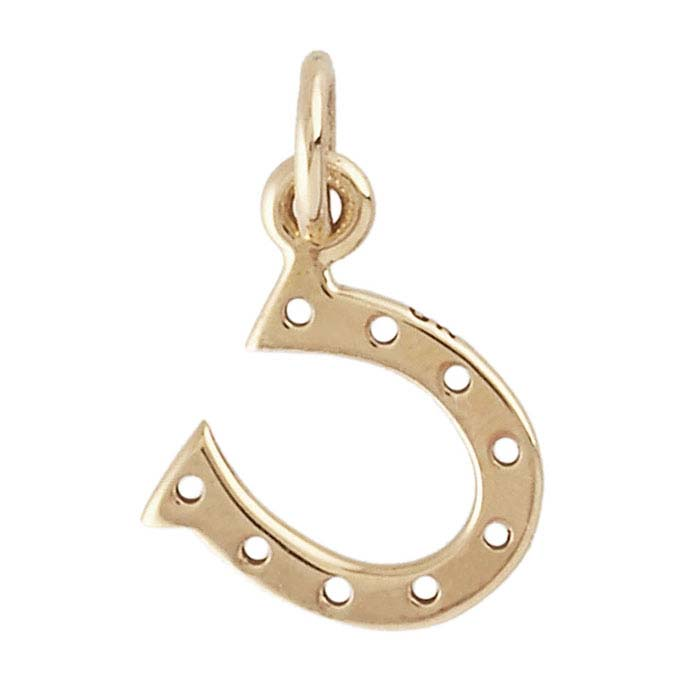 Bronze Lucky Horseshoe Charm